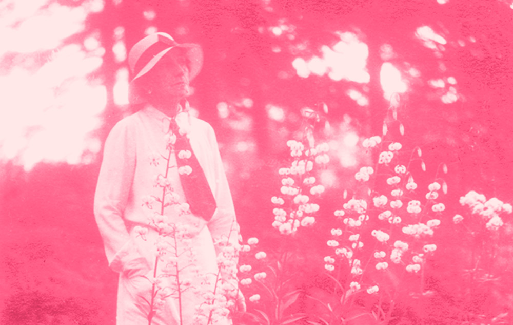Elsie Reford — Pionnière de l'écologie?